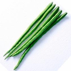 Farmnwe -Fresh -Drum Stick - Munakkaya